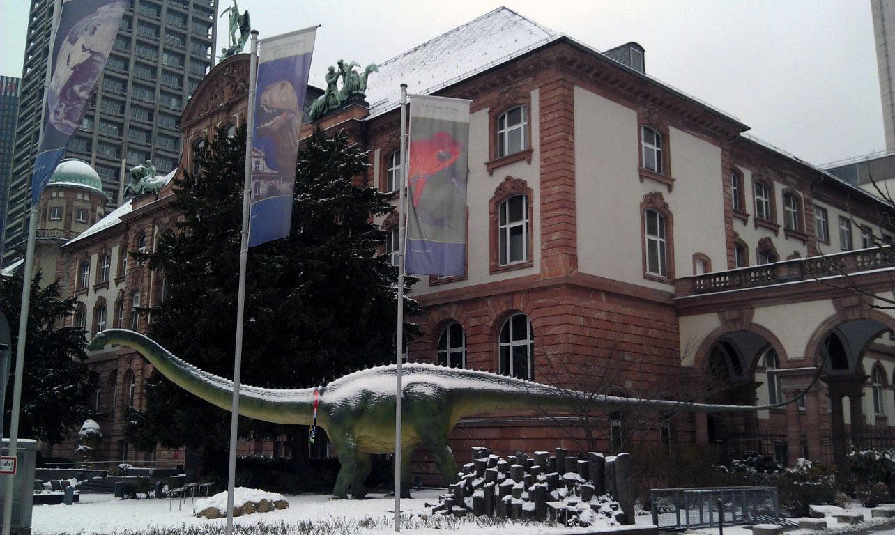 Nemacka_Hesen_Frankfurt_pripordnjacki_muzej_autobusom_akcija