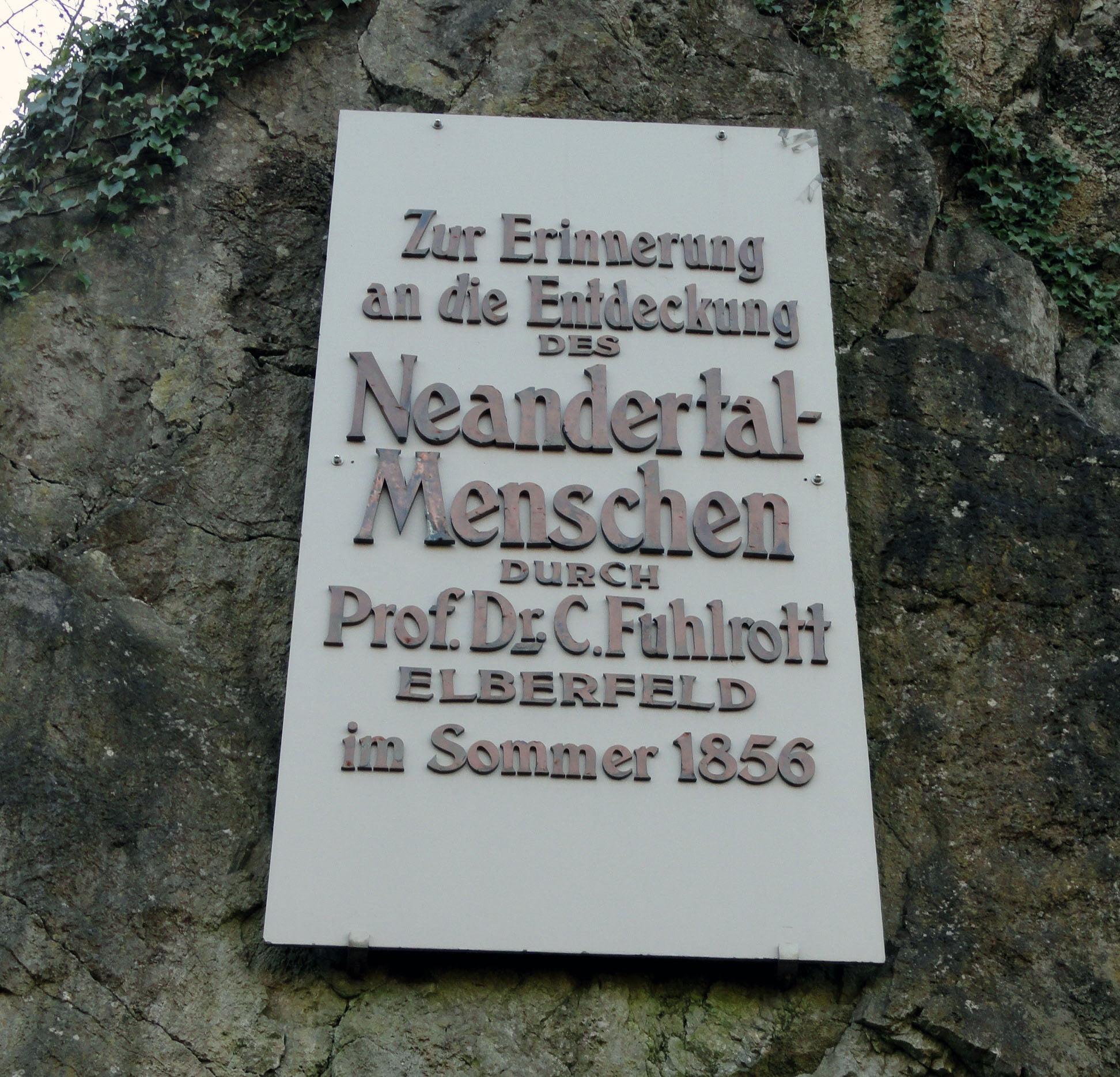 Nemacka_Neandertal_Putovanje_Metropole_First_Minute