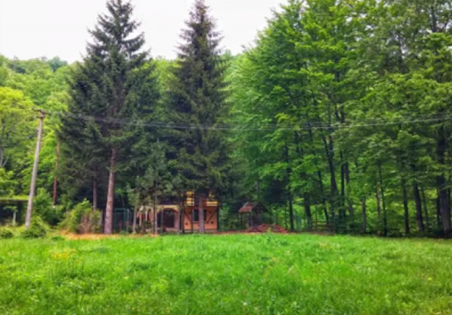 Srbija Jednodnevni izleti Vrelo Grze planinarenje priroda autobusom vodicok 1